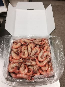 5kg Box Lge Endeavour Prawn